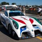 abruzzi2 (Panoz Abruzzi Race Car Cages)